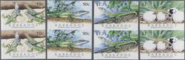 Thematik: Tiere-Amphibien / Animals-amphibian: 2005, BARBADOS: Lizard 'Barbados Anole (Anolis Extrem - Reptiles & Batraciens