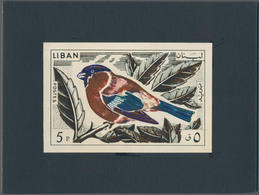 Thematik: Tiere-Vögel / Animals-birds: 1965, Libanon, Issue Birds, Artist Drawing (136x89) 5 Pia. Bu - Vögel