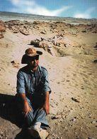 1 AK Mongolei * Dinosaur Skeletons In The Mongolian Desert * - Mongolei