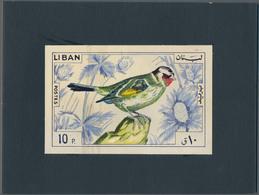 Thematik: Tiere-Vögel / Animals-birds: 1965, Libanon, Issue Birds, Artist Drawing (135x88) 10 Pia.go - Vögel