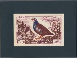 Thematik: Tiere-Vögel / Animals-birds: 1965, Libanon, Issue Birds, Artist Drawing (136x89) 17,50 Pia - Vögel