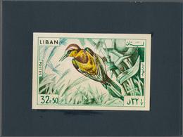 Thematik: Tiere-Vögel / Animals-birds: 1965, Libanon, Issue Birds, Artist Drawing (134x88) 32,50 Pia - Vögel