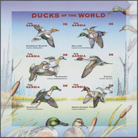 Thematik: Tiere-Vögel / Animals-birds: 2001, The Gambia. IMPERFORATE Miniature Sheet Of 6 For The Is - Vögel
