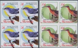 Thematik: Tiere-Vögel / Animals-birds: 2004, MICRONESIA: Definitive Issue 'birds' Set Of Two With 2c - Vögel