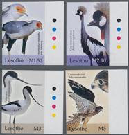 Thematik: Tiere-Vögel / Animals-birds: 2004, LESOTHO: Birds Complete IMPERFORATE Set Of Four (Secret - Vögel