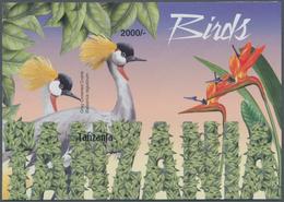 Thematik: Tiere-Vögel / Animals-birds: 2004, Tanzania. Imperforate Souvenir Sheet (1 Value) From The - Vögel