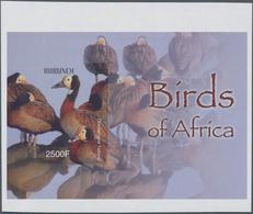 Thematik: Tiere-Vögel / Animals-birds: 2004, BURUNDI: African Birds Complete Set Of Six In An IMPERF - Vögel
