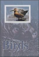 Thematik: Tiere-Vögel / Animals-birds: 2005, Dominica. Imperforate Souvenir Sheet (1 Value) Showing - Vögel