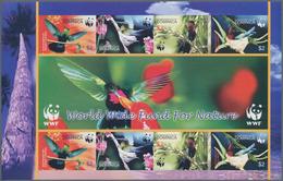 Thematik: Tiere-Vögel / Animals-birds: 2005, Dominica. Imperforate Miniature Sheet Containing Two Co - Vögel