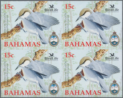 Thematik: Tiere-Vögel / Animals-birds: 2006, Bahamas. Imperforate Block Of 4 For The 15c Value Of Th - Vögel