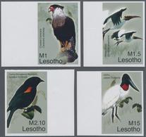 Thematik: Tiere-Vögel / Animals-birds: 2007, LESOTHO: Birds Complete IMPERFORATE Set Of Four (Creste - Vögel