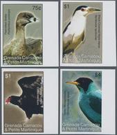 Thematik: Tiere-Vögel / Animals-birds: 2007, GRENADA-CARRIACOU: Birds IMPERFORATE Set Of Four (Pied- - Vögel