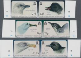 Thematik: Tiere-Vögel / Animals-birds: 2010, BRITISH ANTARCTIC TERRITORY: Antarctic Birds (South Pol - Vögel