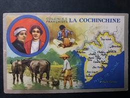 COLONIES FRANÇAISES - PUBLICITÉ ED. PRODUITS LION NOR - CHROMO : LA COCHINCHINE - Cromos