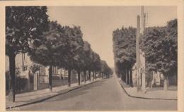 BOURG-la-REINE: Avenue Gallois - Bourg La Reine