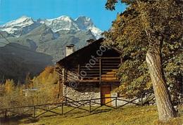 Cartolina Valsesia Tipica Costruzione Della Valle Monte Rosa 1988 - Vercelli