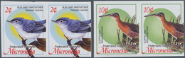 Mikronesien: 2004, Definitive Issue 'birds' Set Of Two With 2c. Polioptila Caerulea And 10c. Rallus - Mikronesien