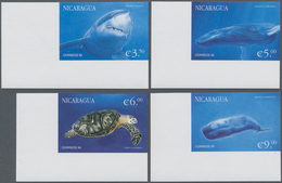 Nicaragua: 2000, Sea Animals Complete IMPERFORATE Set Of Four (white Shark, Two Whales And Turtle) F - Nicaragua