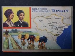 COLONIES FRANÇAISES - PUBLICITÉ ED. PRODUITS LION NOiR - CHROMO : TONKIN - Trade Cards
