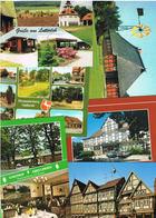 Lot 20 AK Landkreis Celle Querbeet - Deutschland