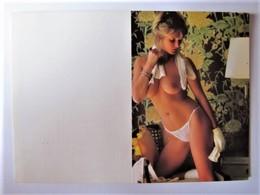 CALENDRIER PETIT FORMAT - Pin-ups - 1984 - Calendarios