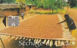 PHONE CARD- CAMEROON (E56.6.2 - Camerún