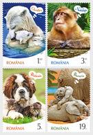 Romania 2019 - Animal's Emotions Stamp Set Mnh - 1948-.... Repúblicas