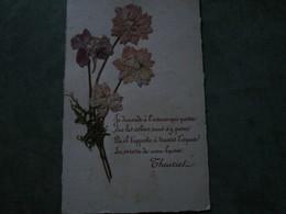 Fleur Sèchée - Je Demande à L'oiseau Qui Passe.......(poème De Theuriet) - Botanik