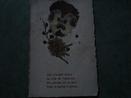 Fleur Sèchée - Enfin D'emplir D'azur.......(poème) - Botanik