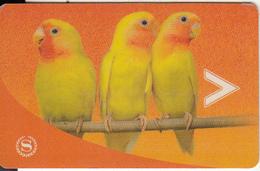 USA - Parrots, Sheraton, Hotel Keycard, Used - Hotelsleutels (kaarten)