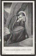 DP. CAMILLE SIERENS ° RUYSSELEDE 1854- + NEVELE 1925 - Godsdienst & Esoterisme