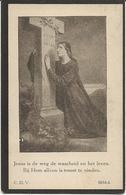 DP. LIVINUS VAN DURME ° HERZEELE 1848- + 1929 - Godsdienst & Esoterisme