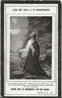 DP. JOANNES BROES ° ITEGEM 1882- + BROECKHEM 1926 - Godsdienst & Esoterisme
