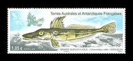 TAAF 2020 Mih. 1070 Fauna. Fishes. Sail Icefish MNH ** - French Southern And Antarctic Territories (TAAF)