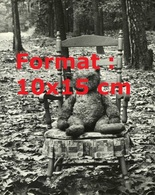 Reproduction D'unePhotographie Ancienne D'un Ourson En Peluche Assis Sur Une Chaise En Bois En Forêt - Reproductions