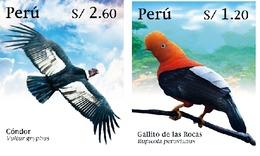 Peru 2020 Birds, Condor & Cocks-of-the-rock - Peru