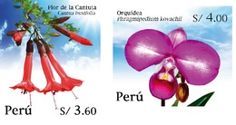 Peru 2020 Flowers Orchid - Peru