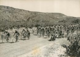 PHOTO ORIGINALE TOUR DE FRANCE CYCLISME 1952 FORMAT 18 X 13 CM - Radsport