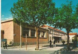 COLLEGNO (REGINA MARGHERITA) SCUOLE ELEMENTARI G. MARCONI   (149) - Scuole