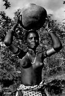 Photo Foto Carte Afrique Africa  Edition East Africa 315  D. Frank , Frank Studio Mombasa Giriama    Barry 4934 - Cartes Postales