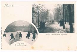 Nancy - Une Partie De Boules De Neige - Entrée De La Pépinière. D6 - Nancy