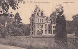 Haversin - Ciney - Château De Nettine - Pas Circulé - Nels - TBE - Ciney
