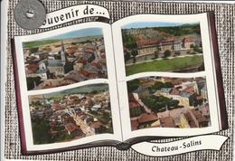 57 - Carte Postale Semi Moderne Dentelée De  SOUVENIR DE CHATEAU SALINS  Multi Vues - Chateau Salins