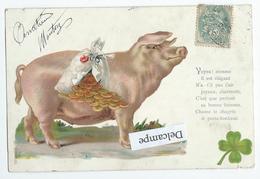 Fantaisie - Cochon En Porte Bonheur Tirelire - Cerdos