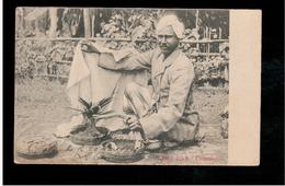CEYLON  Mango Trick- Colombo 1905 Old Postcard - Sri Lanka (Ceylon)