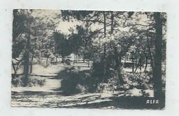 Les Mathes (17) : Le Terrain De Camping De Le Clapet En 1953 (animé) PF - Sonstige Gemeinden