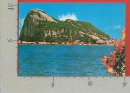 CARTOLINA NV GIBILTERRA - Penon De GIBRALTAR Desde Algeciras - 10 X 15 - Gibilterra
