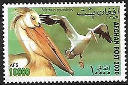 AFGHANISTAN - MNH 2000 : Great White Pelican - Pelecanus Onocrotalus - Pélicans