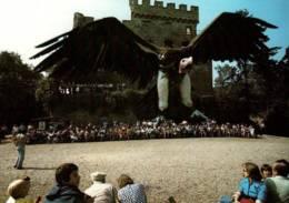 CPM - VOLERIE DES AIGLES - CHÂTEAU KINTZHEIM (67) - VAUTOUR ORICOU ... - Birds