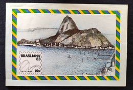 Brazil Aerograma Internacional Brasiliana 1983 Rio De Janeiro - Postwaardestukken